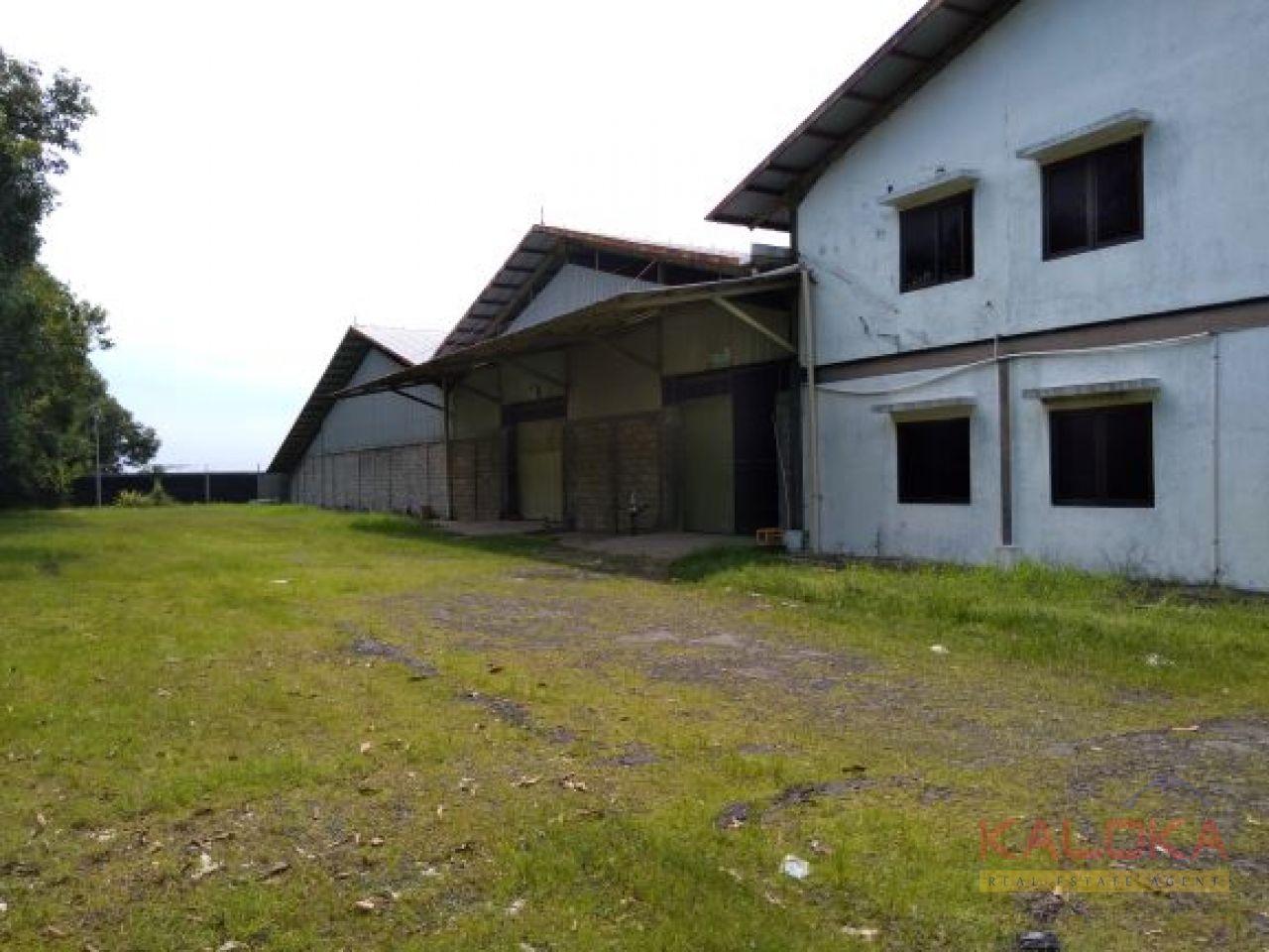 Gudang di lahan 7 Ha ex pabrik industri furnitur rotan